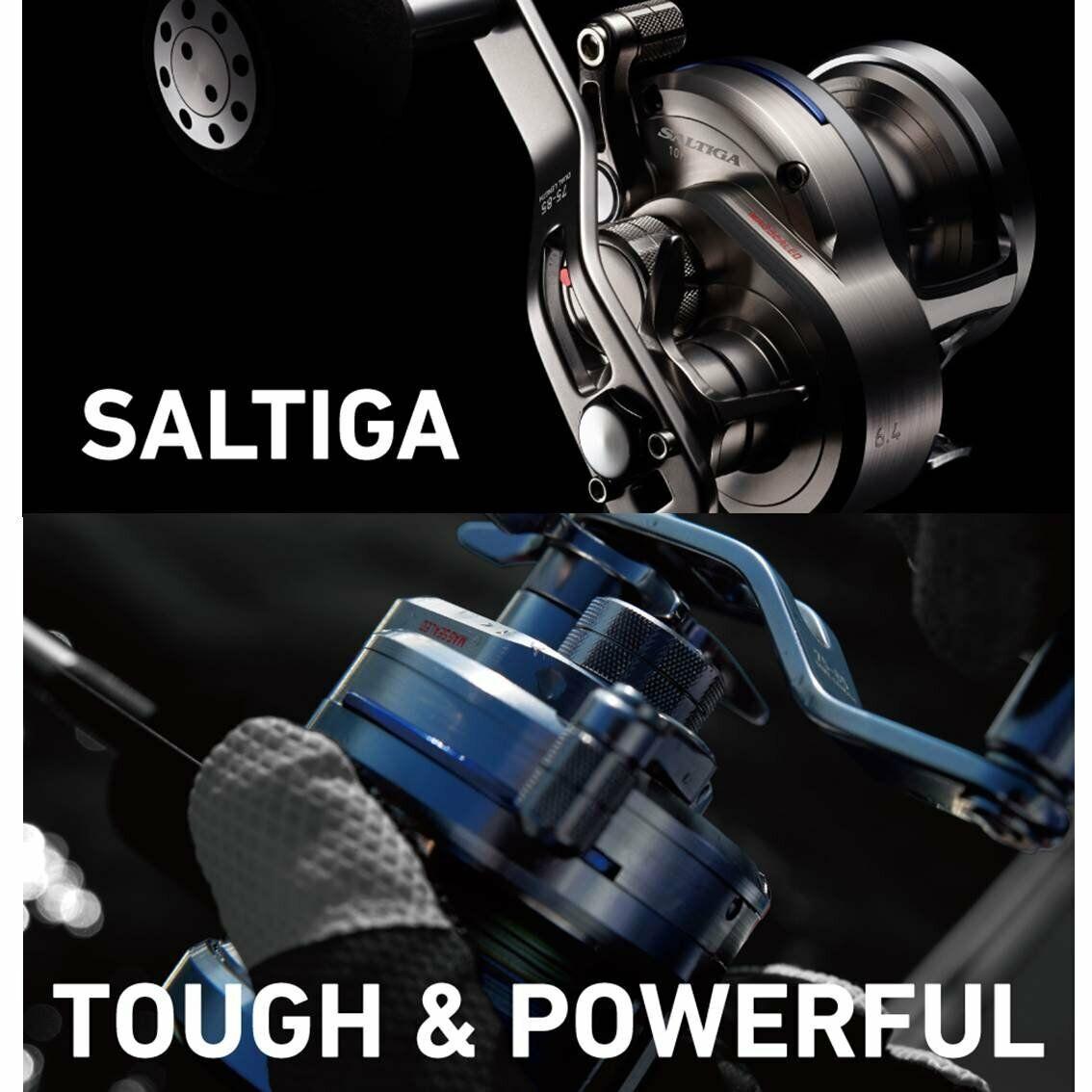 DAIWA SALTIGA 15 15 15 10 5.1 baitcasting mulinello per JIGGING NUOVO FS cbd