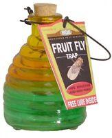 Springstar Glass Fruit Fly Trap, Kitchen Insect Bug Killer, on sale