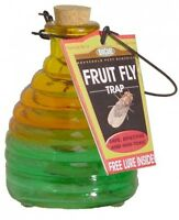Springstar Glass Fruit Fly Trap, Kitchen Insect Bug Killer, on sale