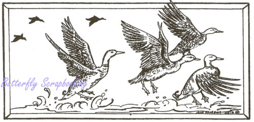 Mallard Ducks in Flight Wood Mounted Rubber Stamp NORTHWOODS O9512 New