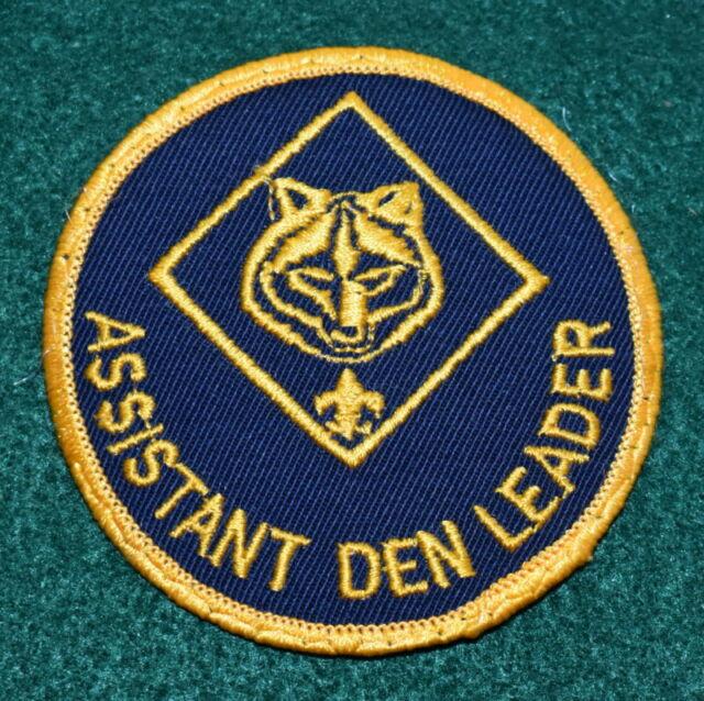 Adult boy scout leader position