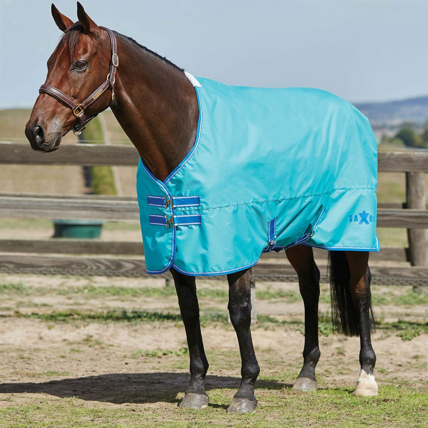 Saxon Standard Lite Turnout Rug Waterproof Breathable Lightweight Equestrian