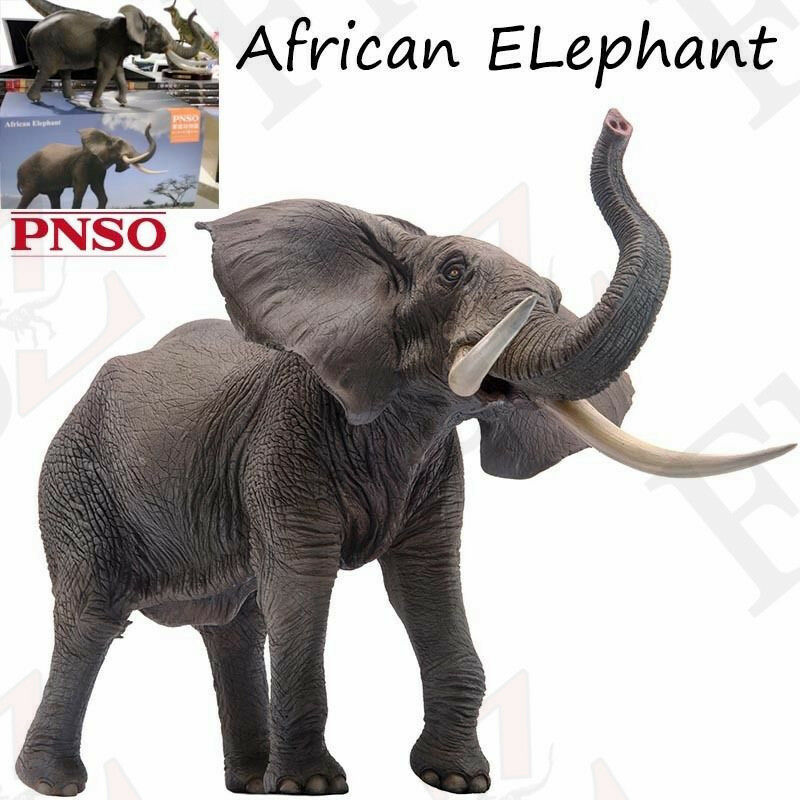 Pnso Elefante Africano Juguete de Vida Silvestre modelo realista figura artística científico de gran