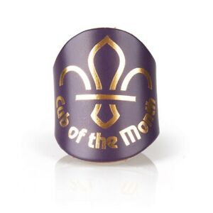 Cub-Scout-of-the-Month-Leather-Woggle-NEW