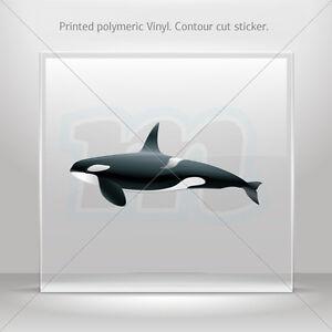 Details about Decals Decal Cartoon Killer Whale Orca Car Atv Bike Garage st5 W8X42