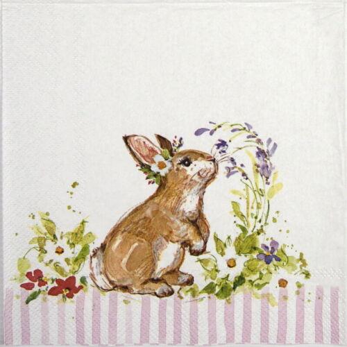Decoupage Papel 4x Servilletas-Precioso Bunny Luz Rose-Para Fiesta