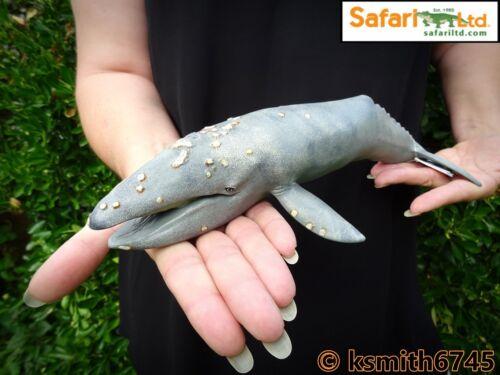 Safari GREY WHALE solid plastic toy wild sea marine animal figure NEW *