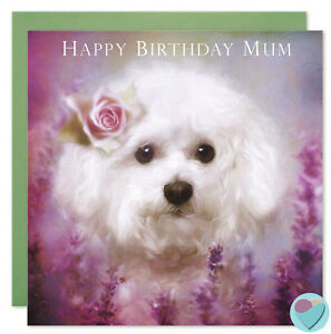 Details About Mum Birthday Card Bichon Frise Puppy Dog Lover Art Painting Christmas Sale