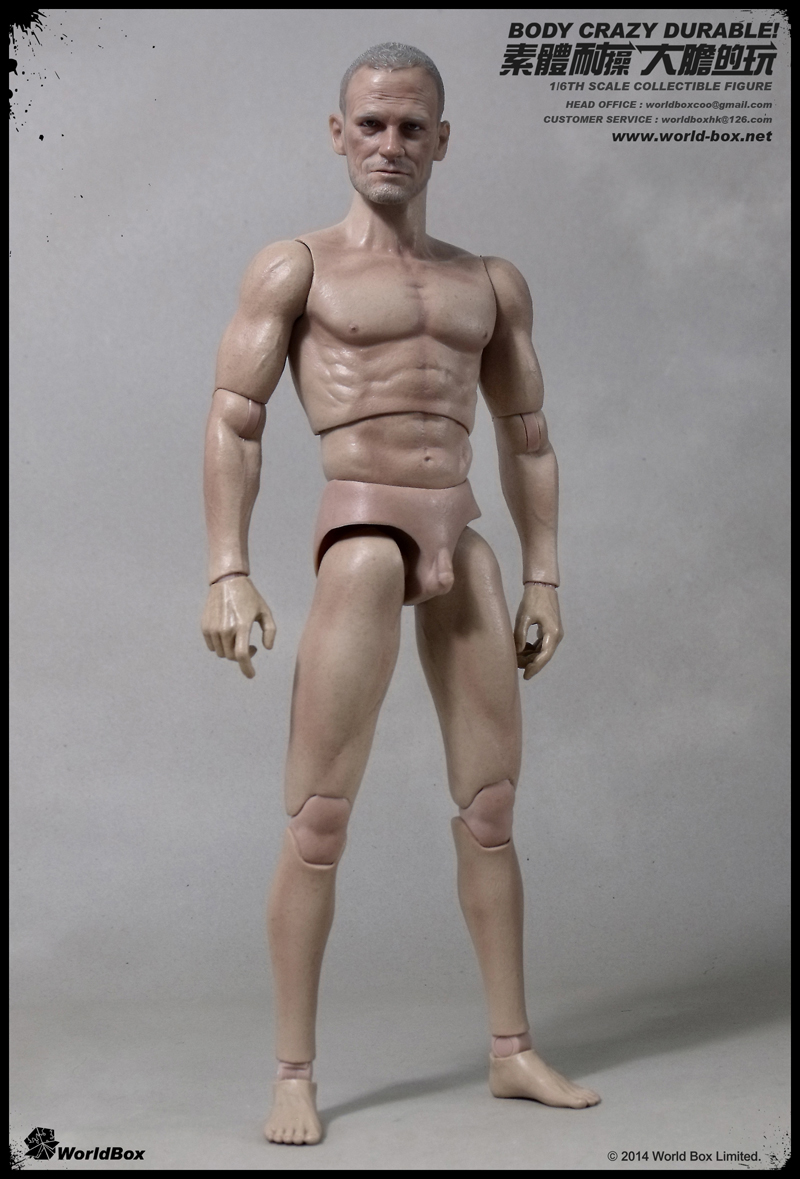 WORLDBOX 1 6 BODY AT003 ACTION ACTION ACTION FIGURE 12 ARTICULATED BODY WALKING DEAD MERLE 45e1dc