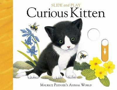 Slide & Play: Curious Kitten by Wood, A.J.