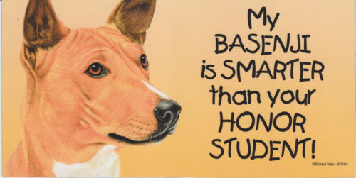 My BASENJI is SMARTER than your HONOR STUDENT car//fridge//locker MAGNET 4X8