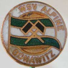 WSV ALPINE DONAWITZ Vintage Club crest type badge Stick pin 18mm x 18mm
