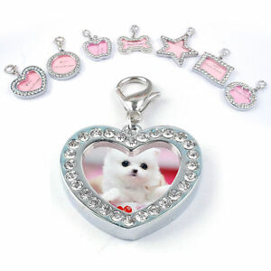 1PC-Cute-Pet-ID-Tags-Metal-Crystal-Puppy-Dog-Cat-Name-Tag-Personalized-Gift