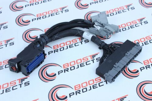 AEM Infinity Plug /&Play Harness for Mitsubishi EVO8 for use with 30-7108,30-7106