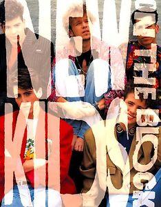 NEW-KIDS-ON-THE-BLOCK-1990-TOUR-CONCERT-PROGRAM-BOOK-BOOKLET-NMT-2-MINT