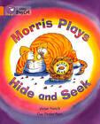 Collins Big Cat: Morris Plays Hide and Seek Workbook by HarperCollins Publishers (Paperback, 2012)