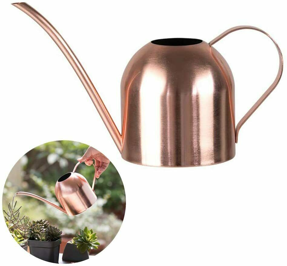 Hggzeg Stainless Steel Watering Can, Small Long Mouth Watering Pot 500ML (Rose)