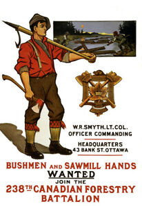 1915-Canadian-Forestry-Battalion-Recruiting-Poster-Art-Print-13-034-x-19-034