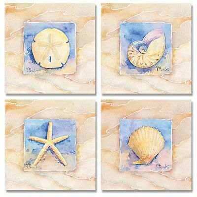 4 Sea Shell Water Color Art Prints Sand Dollar Starfish Beach Decor 8 x 8
