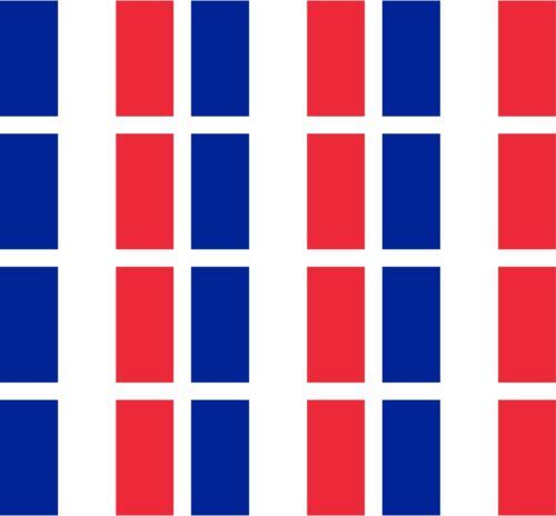 12 France flags vinyl stickers football baseball hockey soccer helmet car sports