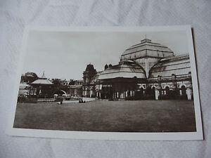 Lot27-c1930-CHELTENHAM-WINTER-GARDENS-Real-Photo-Photograph