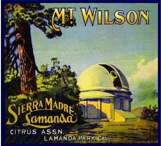 Wilson Lemon Citrus Fruit Crate Label Art Print Sierra Madre Lamanda Park Mt