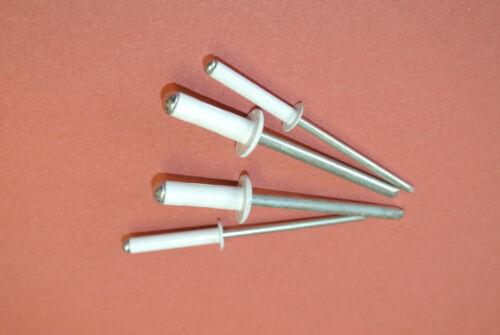 4.0 mm x 20mm Aveugles Pop Rivets dôme blanc ouvert corps en aluminium acier tige 25 Pack