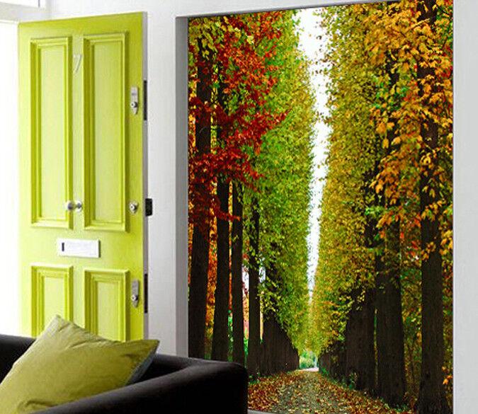 3D Schöne Gerade Wälder 72 Tapete Wandgemälde Tapete Tapeten Bild Familie DE
