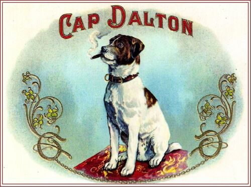 Cap Dalton Jack Russell Terrier Puppy Dog Vintage Cigar Box Crate Label Print
