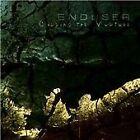 Enduser - Calling the Vultures (2005)