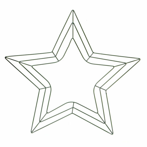 The Holiday Aisle Star Shaped Wreath Form Hanging Accessory