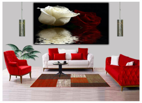 RED AND WHITE ROSES IN WATER PHOTO PRINT ON WOOD FRAMED CANVAS WALL ART DECOR