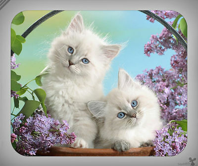 Cats // Kittens, Babies, Flowers, Adorable, Cute // Mouse Pad [NEW!] 5