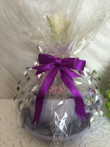 Figura di tazza e piattino FIORIERA Set Regalo-Cup pianta semi di fiori