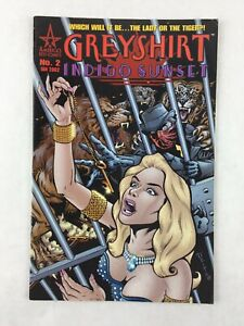 Greyshirt-Inidgo-Sunset-No-2-Jan-2002-Comic-Book-America-039-s-Best-Comics
