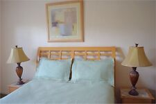 MINT GREEN 4 pc bedsheet set FULL size PREMIUM QUALITY with fancy sham pillows