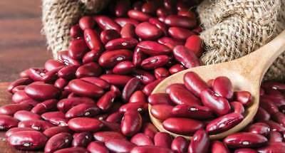 Russian Beans Seeds organic Ukrainian 5 seeds D Farmer/'s dream