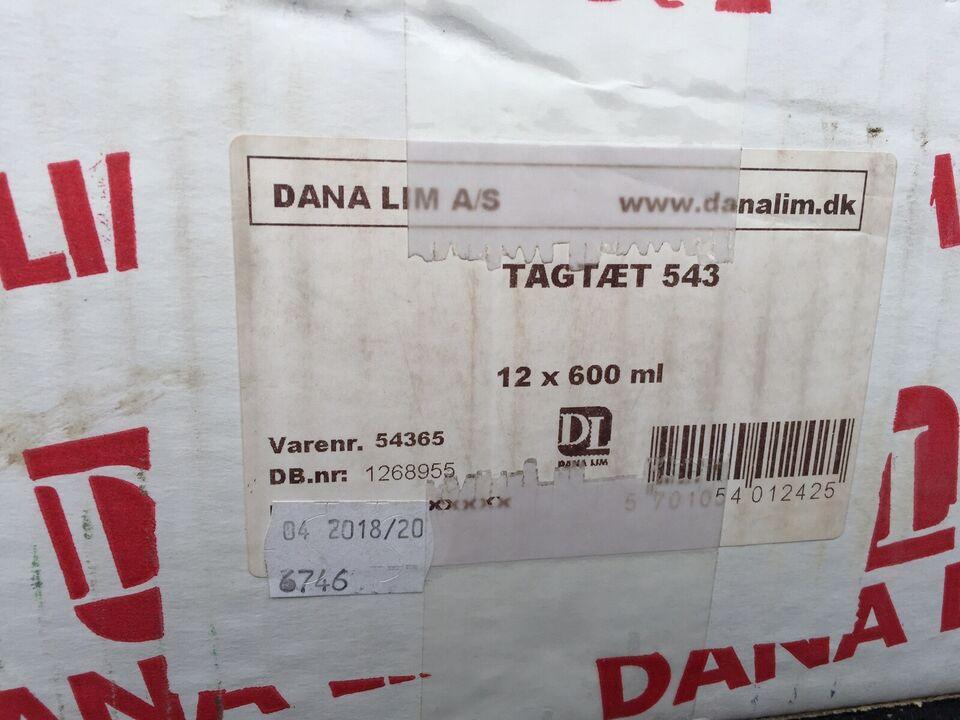 Dana Lim Tagtæt 543