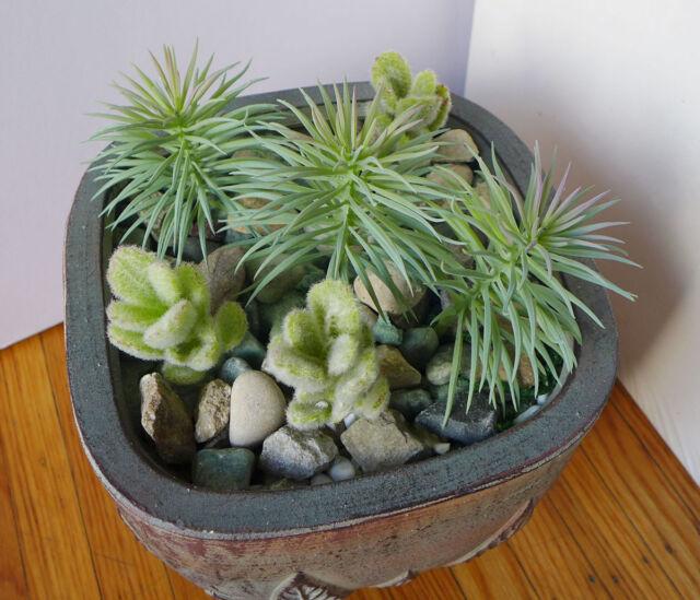 8 Pieces Artificial Mini Pine tree Facking Grass Plants Succulents Grass Gray