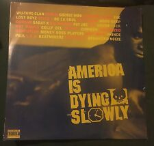 AMERICA IS DYING SLOWLY dbl LP Wu Tang Pete Rock Eightball MJG Mobb Deep Coolio