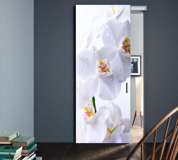 Klebefolien klebefolie Selbstklebende Türfolie Folien Folie  Poster Tür Foto 310