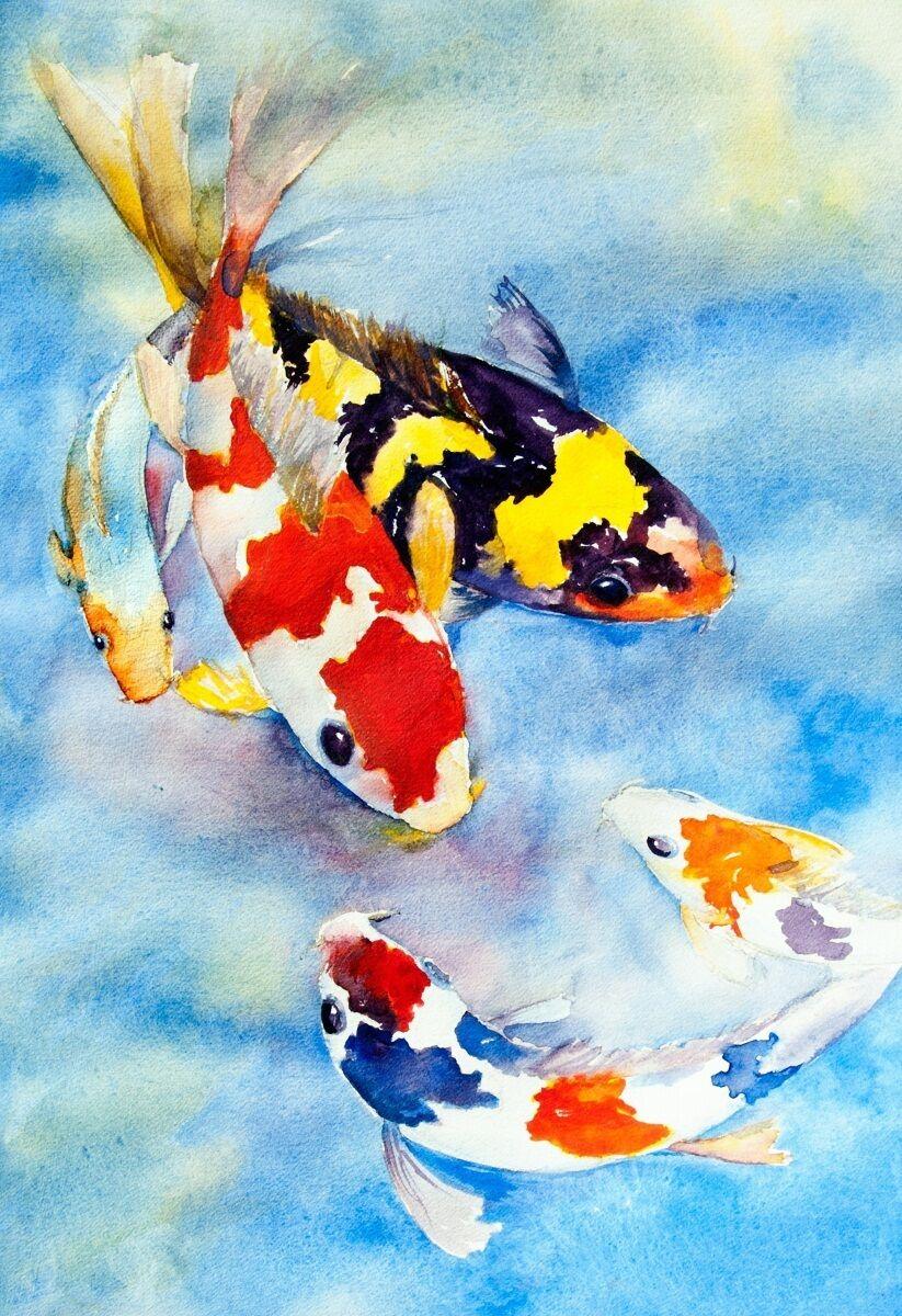 3D fish painting Farbeful Risers Decoration Photo Mural Vinyl Decal WandPapier CA
