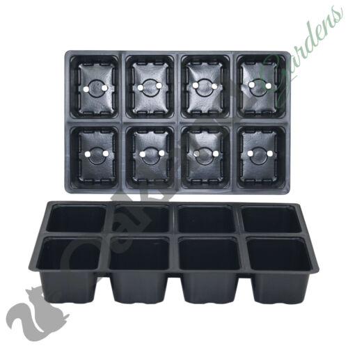200 X 8 Cell Full Size Seed Tray Inserts Plug Trays Bedding plant Packs Plastic