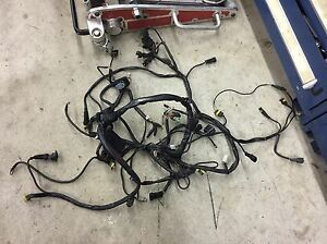 Fantastic Details About Ducati Monster S4R Wiring Harness Wiring Cloud Hisonuggs Outletorg