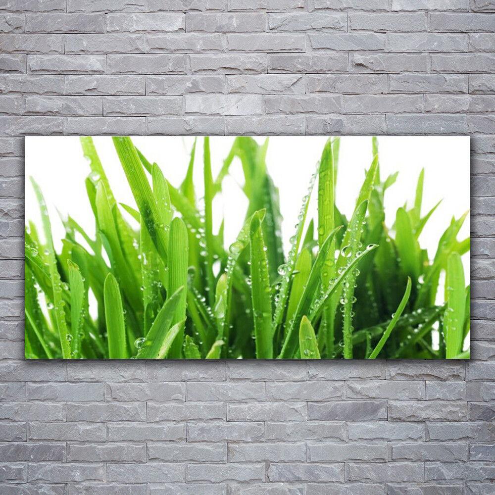 Wandbilder Glasbilder Druck auf Glas 120x60 Grase Pflanzen