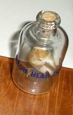 Hilton Head Island Miniature Shell in Corked Jug Bottle Glass Souvenir Ornament