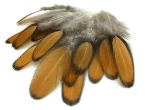 Golden Brown Whiting Farms Laced Hen Saddle Feathers Fly Tying Craft 1 Dozen