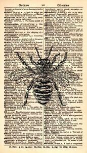 ORIGINAL-Bumble-Bee-Vintage-Dictionary-Art-Print-Honey-Bee-Art-Print-345KSD