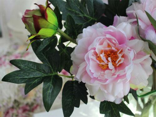 Mazzo Peonia Artificiali Fiore Rosa Foglie Verde Decorazione Nozze Casa