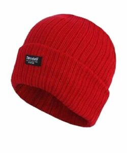 Image is loading Ladies-Thinsulate-Chunky-Lined-Knitted-Knit-Beanie-Thick- 3d639f32e63